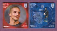 England David James Manchester City (Tex)